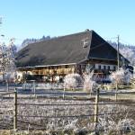 Der Erlenhof im Winter